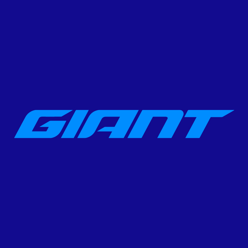 VIỆT THẮNG ĐƯỢC ỦY QUYỀN TỪ GIANT